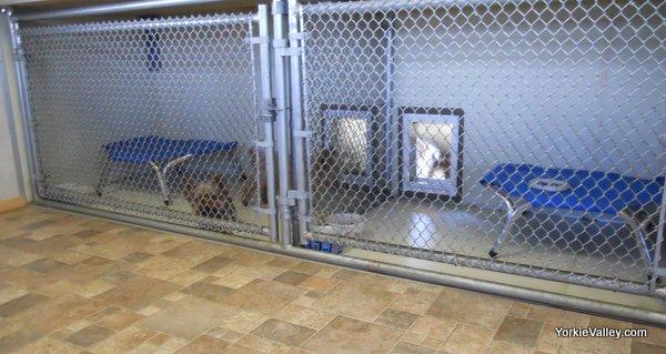 Indoor dog kennel plans the image kid for Design indoor dog crate